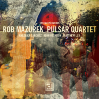 """Read """"Stellar Pulsations"""" reviewed by AAJ Italy Staff"""