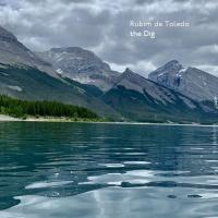 Album The Dig by Rubim de Toledo