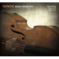 "Read ""Tailwind"" reviewed by Gareth Thompson"
