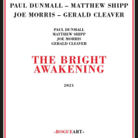 "Read ""The Bright Awakening"" reviewed by John Sharpe"