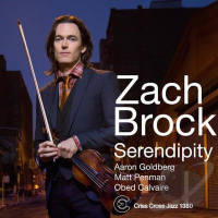 Album Serendipity by Zach Brock