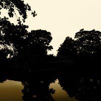 Album I tystnad sluter sig tiden by Fredrik Uhlmann