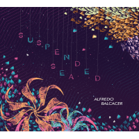 Alfredo Balcacer: Suspended Sea