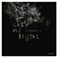 Chamber 4: City Of Light