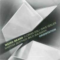 Orientation by Weird Beard