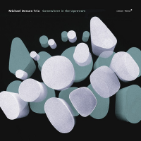 Michael Dessen Trio: Somewhere In The Upstream