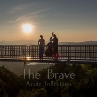 "Read ""The Brave"" reviewed by Geannine Reid"