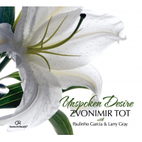 Album Unspoken Desire by Zvonimir Tot