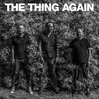 Album Again by The Thing