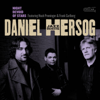 Album Night Devoid of Stars by Daniel Hersog