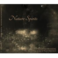 Plays the music of Peter Knudsen: Nature Spirits