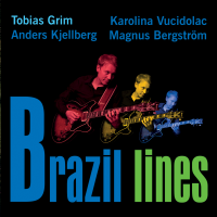Brazil Lines