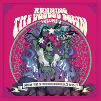 Running The Voodoo Down Volume 2 by Various Artists