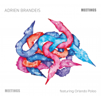 Album Meetings by Adrien Brandeis
