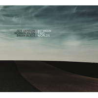 Jeff Denson, Romain Pilon, Brian Blade: Between Two Worlds