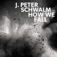 Jan Peter Schwalm: How We Fall