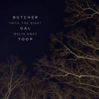 Album Until The Night Melts Away by John Butcher