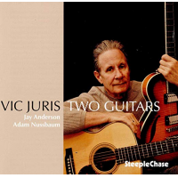 Two Guitars by Vic Juris