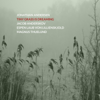 Jonathan Andersen: Tiny Grass Is Dreaming