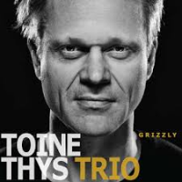 Album Grizzly by Toine Thys