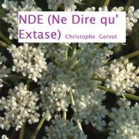 Album NDE (Ne Dire qu'Extase) by Christophe Gervot