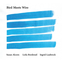 """Read """"Bird Meets Wire"""" reviewed by Troy Dostert"""