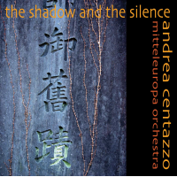 Album The Shadow And The Silence by Andrea Centazzo