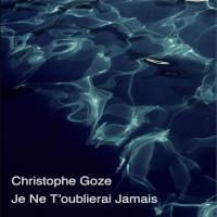Album Je ne t′oublierai jamais (Single) by Christophe Goze