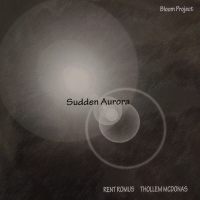 Bloom Project: Sudden Aurora by Thollem McDonas