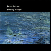 "Read ""Entering Twilight"" reviewed by John W. Patterson"