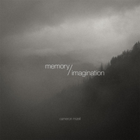 "Read ""Memory/Imagination"""