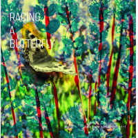 Album Racing a Butterfly by Anne Mette Iversen