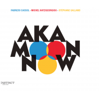Album Now by Aka Moon
