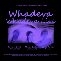 Album Whadeva (Live at Dangerous Art Studios February 13, 2020) by Billie Davies