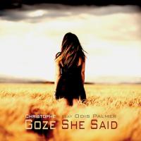 Album She Said (Single) by Christophe Goze