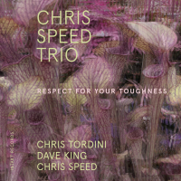 Respect for your Toughness by Chris Speed