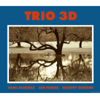 Trio 3D by Joe Fonda