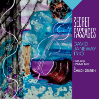 David Janeway Trio featuring Frank Tate and Chuck Zeuren: Secret Passages
