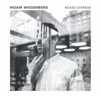 "Read ""Roads Diverge"" reviewed by Neri Pollastri"