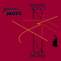 Album Druidh Lacunae by Bill Noertker