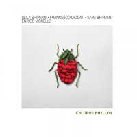 "Read ""Clorofilla - Chloros Phyllon"" reviewed by Claudio Bonomi"