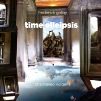 "Read ""Time Elleipsis"" reviewed by Glenn Astarita"