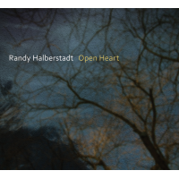 "Read ""Open Heart"" reviewed by Paul Rauch"