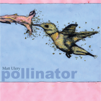 Album Pollinator by Matt Ulery