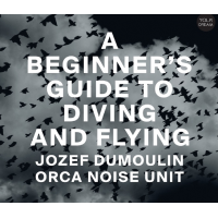 Album A Beginner's Guide To Diving And Flying by Jozef Dumoulin