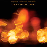 "Read ""You Have Options"" reviewed by Glenn Astarita"