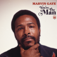 Album You're the Man by Marvin Gaye