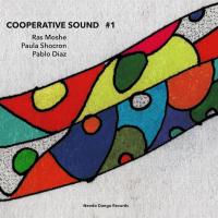 Album Cooperative Sound #1 by Paula Shocron