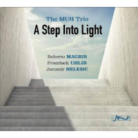 "Read ""A Step Into Light"" reviewed by Jack Bowers"