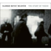 Album The Study of Touch by Django Bates